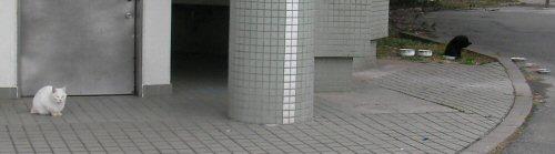 090124_104136.jpg